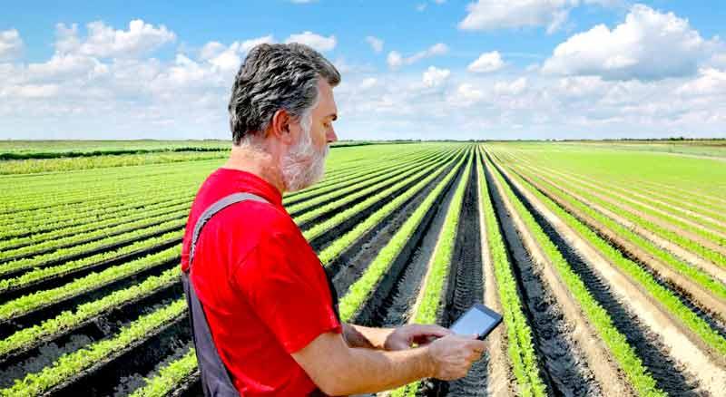 Agrozona.bg - Всичко за селското стопанство и фермера на едно място
